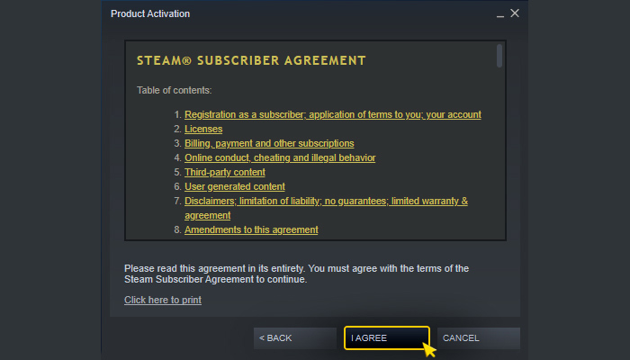 Activation on Steam. Step 2.2